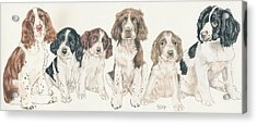 English Springer Spaniel Puppies Acrylic Print