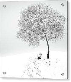 Enjoy The Silence Acrylic Print