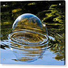 Enjoy This Moment Acrylic Print by Terry Cosgrave