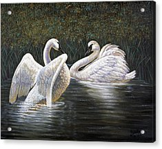 Enjoying The Trumpeter Swans Acrylic Print by Gregory Perillo