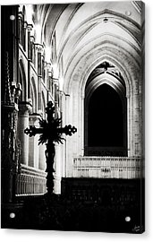 Acrylic Print featuring the photograph Enlightenment  by Lisa Knechtel