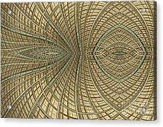 Enmeshed Acrylic Print by John Edwards