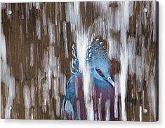 Ennui Acrylic Print by Tracy Munson
