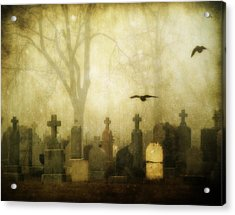 Enveloped By Fog Acrylic Print by Gothicrow Images