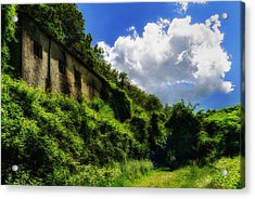 Acrylic Print featuring the photograph Enveloping Vegetation On Abandoned Houses - Vegetazione Avviluppante Sulle Case Abbandonate by Enrico Pelos