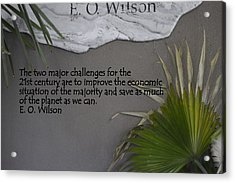 E.o. Wilson Quote Acrylic Print by Kathy Barney