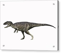 Eocarcharia Dinops, Early Cretaceous Acrylic Print by Nobumichi Tamura