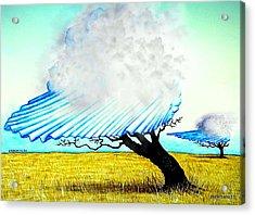 Ephemeral And Brief Acrylic Print by Paulo Zerbato