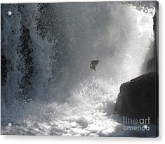 Epic Journey Acrylic Print by Gayle Swigart