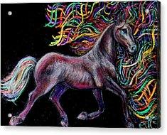 Equestrian Canter Acrylic Print by Elizabeth Clausen