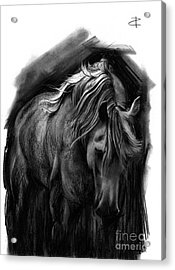 Acrylic Print featuring the drawing Equine 1 by Paul Davenport