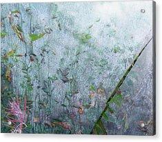 Escape Acrylic Print by Brian Boyle