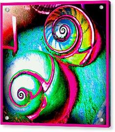 Escar A Go Go Acrylic Print by Marianne Dow