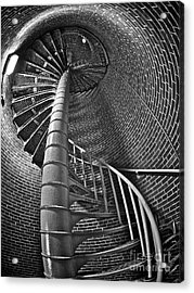 Escher-esque Acrylic Print by Mark Miller