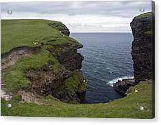 Eshaness Cliffs Acrylic Print by Steve Watson