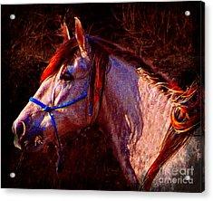 Espirite Libre Acrylic Print