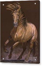 Acrylic Print featuring the painting Espiritu Espanol by Sheri Gordon