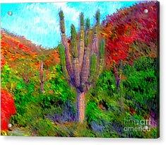 Espiritu Santo Cactus 2 Acrylic Print