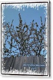 Essence Of Nature Awakening Acrylic Print