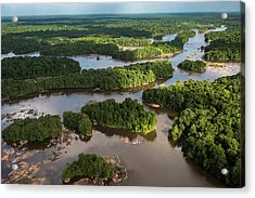 Essequibo River, Guyana Acrylic Print by Pete Oxford