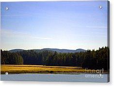 Estuary Near Nemah Acrylic Print