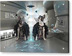 Et Dogs Acrylic Print