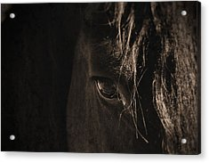 Eternal Eye Acrylic Print