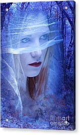 Eternity Acrylic Print by Donald Davis