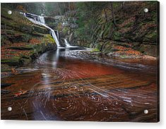 Ethereal Autumn Acrylic Print by Bill Wakeley