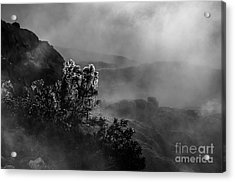 Ethereal Beauty In Black And White Acrylic Print