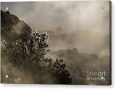 Ethereal Beauty Acrylic Print