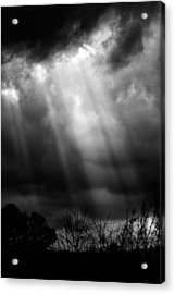 Ethereal Acrylic Print by Daniel Amick