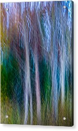 Ethereal Forest Acrylic Print