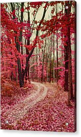 Ethereal Forest Path With Red Fall Colors Acrylic Print