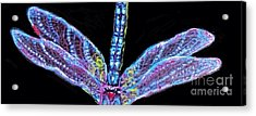 Ethereal Wings Of Blue Acrylic Print by Kimberlee Baxter