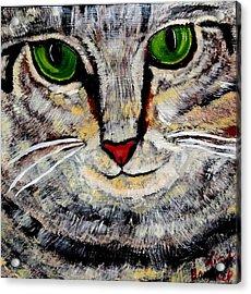 Ethical Kitty See's Your Dilemma Acrylic Print
