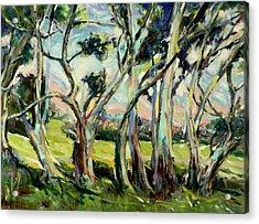Eucalypts In Jacob's Creek Acrylic Print by Zofia  Kijak