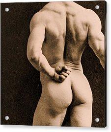 Eugen Sandow Acrylic Print