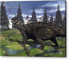 Euoplocephalus Dinosaur Walking Acrylic Print
