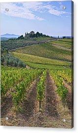 Europe, Italy, Tuscany, Chianti Acrylic Print