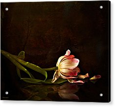 Even Though A Flower Fades Acrylic Print by Theresa Tahara