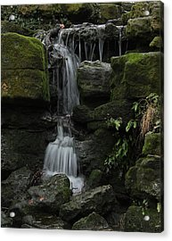 Even When We Fall Acrylic Print by Theresa Selley