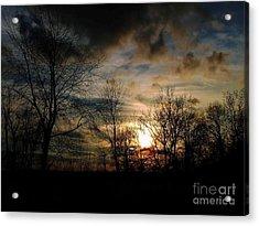 Evening Approach Acrylic Print