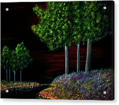 Evening Dream Acrylic Print by Tim Townsend