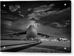 Evening Flight Acrylic Print by Mountain Dreams