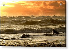 Acrylic Print featuring the photograph Evening In Kinard by Barbara Walsh