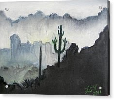 Evening In The Desert Acrylic Print