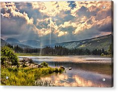 Evening In The Rocky Mountain National Park Acrylic Print