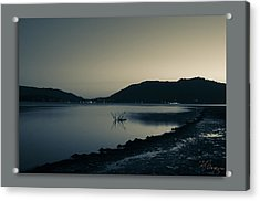 Acrylic Print featuring the photograph Evening by Kevin Bergen