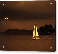 Acrylic Print featuring the photograph Evening Near Sausalito  by Chuck Caramella